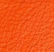 flame-orange-racing